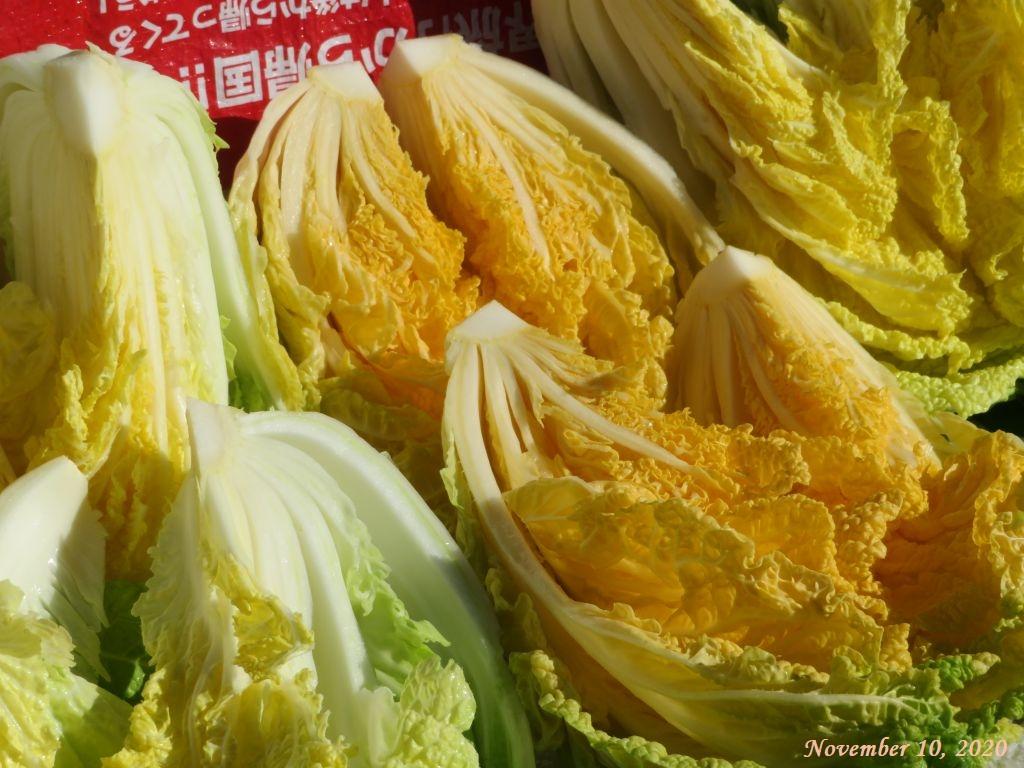 画像7(黄芯の白菜)