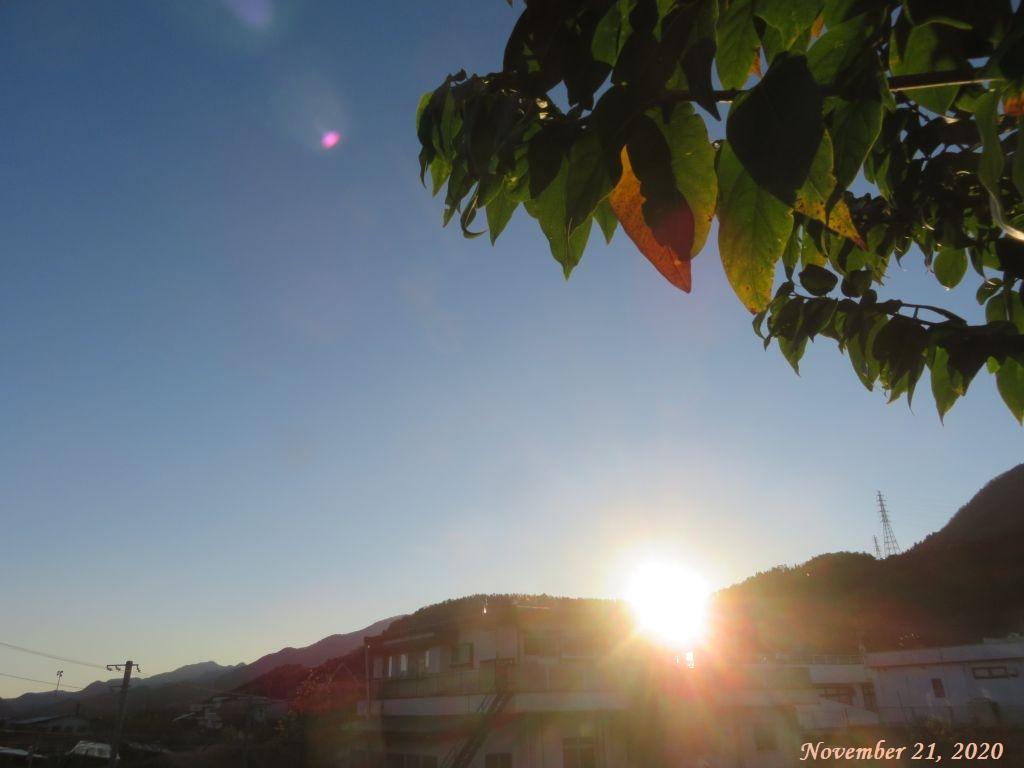 画像1(朝陽)