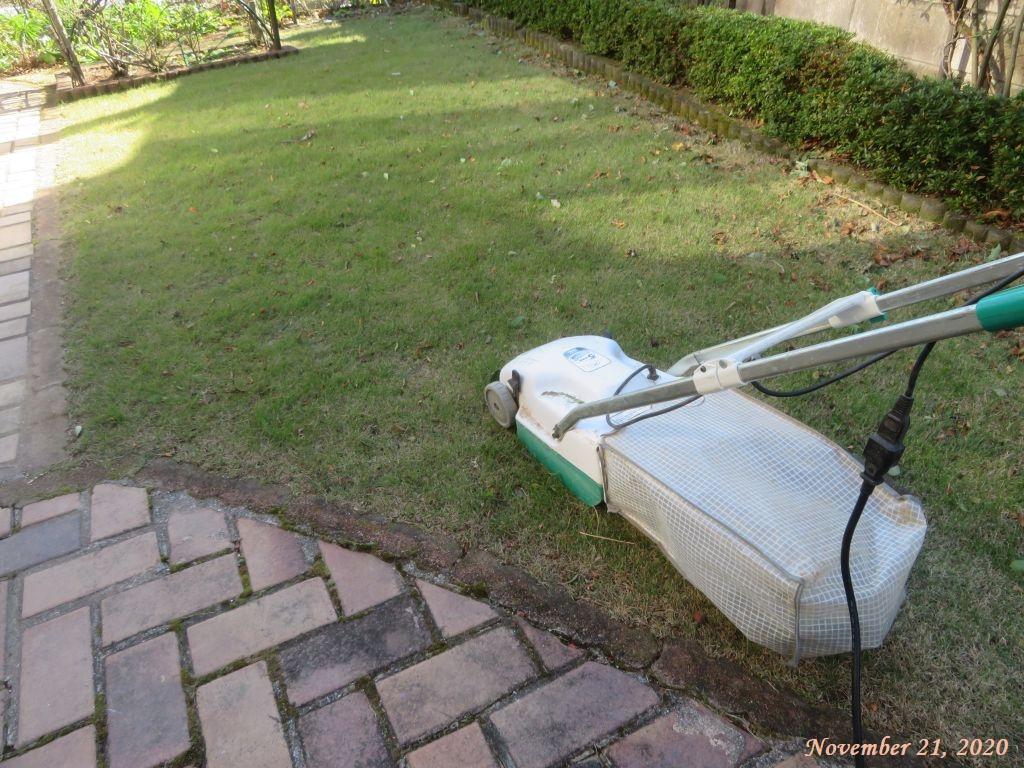画像10(芝刈り)