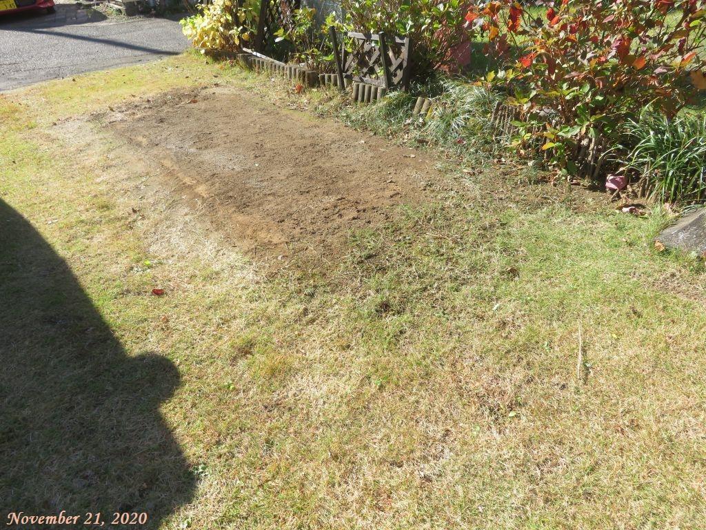 画像11(庭西側の芝生)
