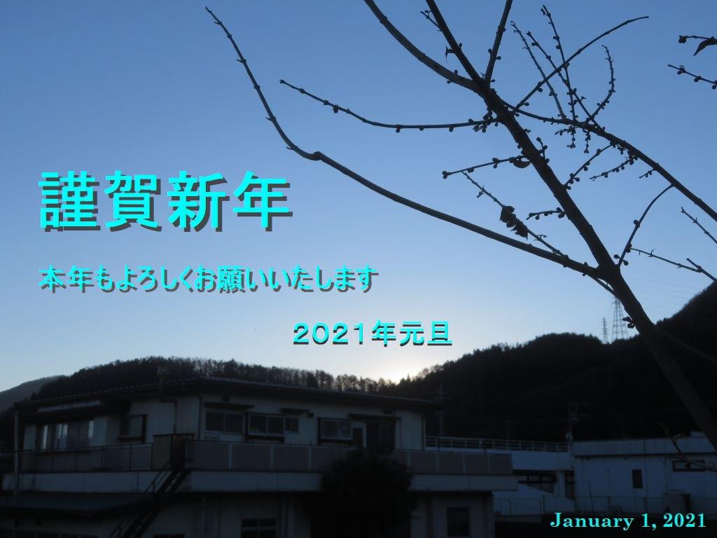 画像1(謹賀新年)