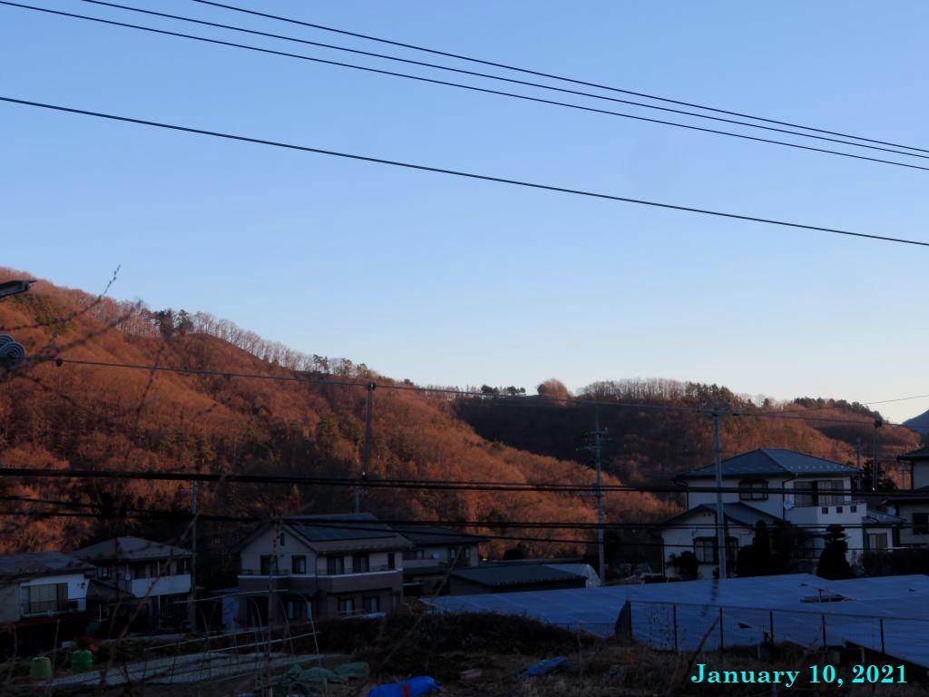 画像2(朝日)