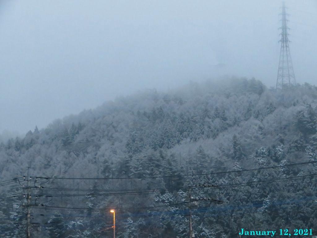 画像6(初雪)