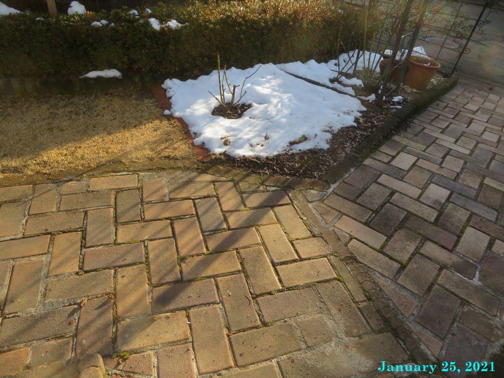 画像6(日陰の雪)