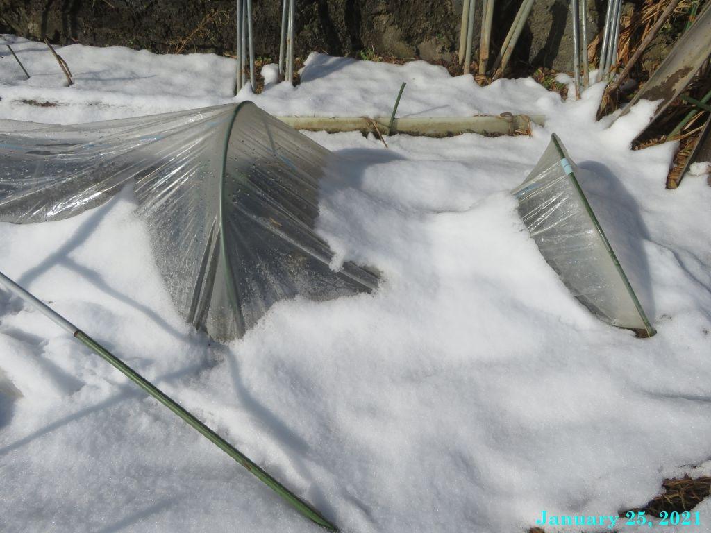 画像8(雪に押しつぶされたトンネル)