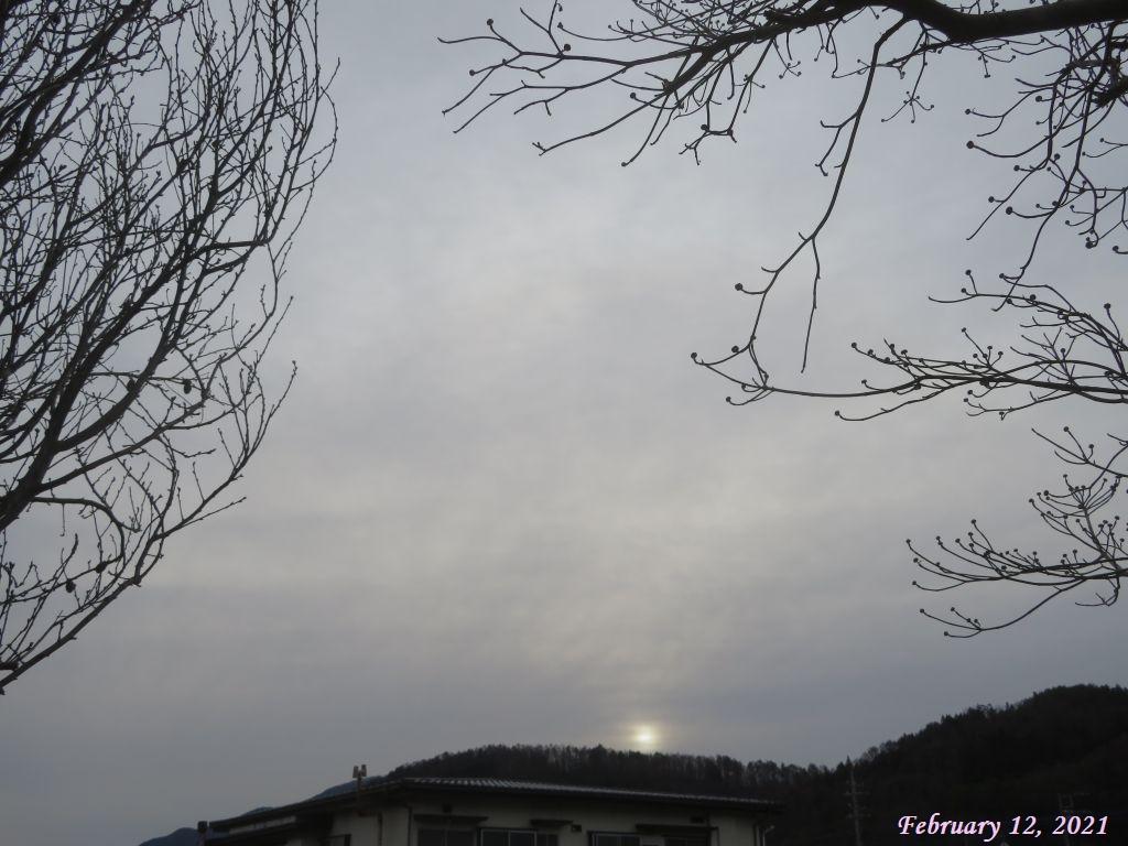 画像1(朝日)