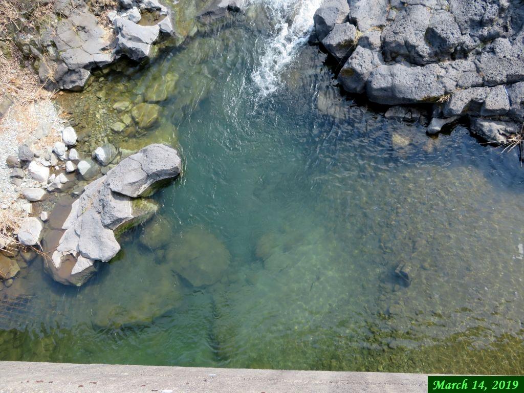 画像5(水があるときの鹿留川)