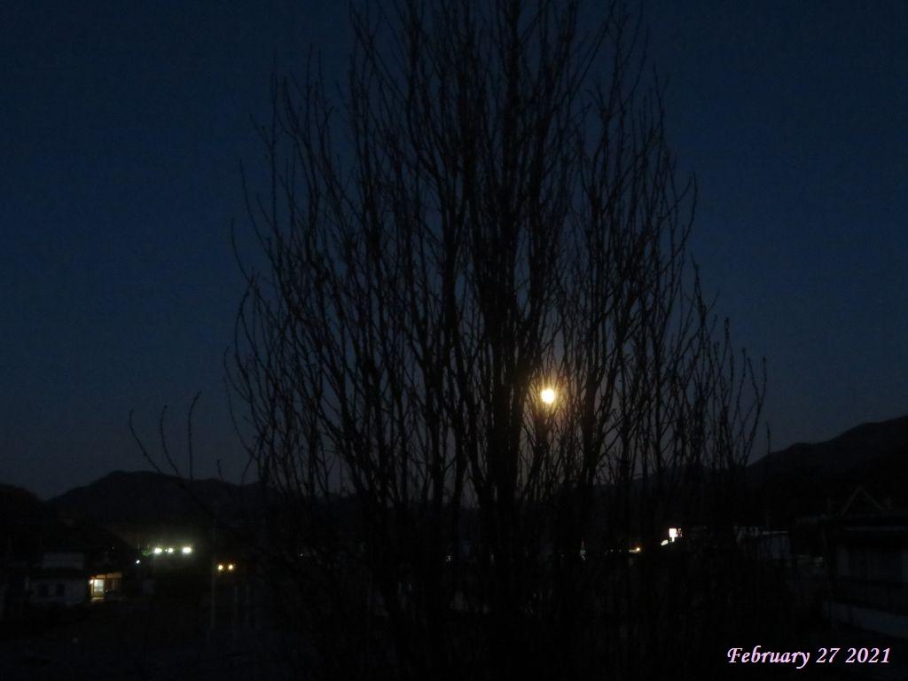 画像1(満月)