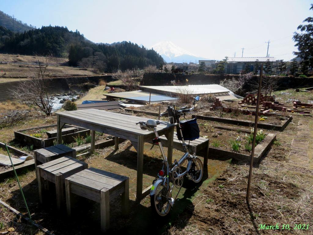 画像6(トレンクルと富士山)