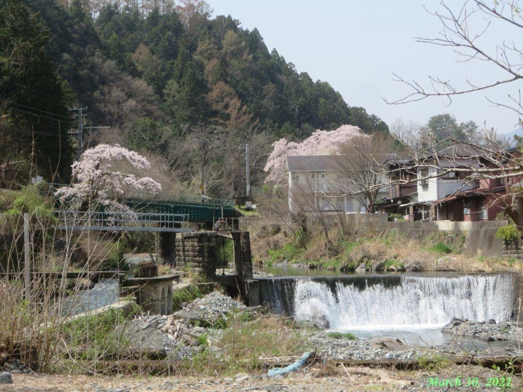 画像24(田原の滝)