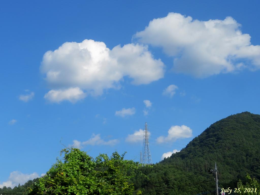 画像1(夏空)