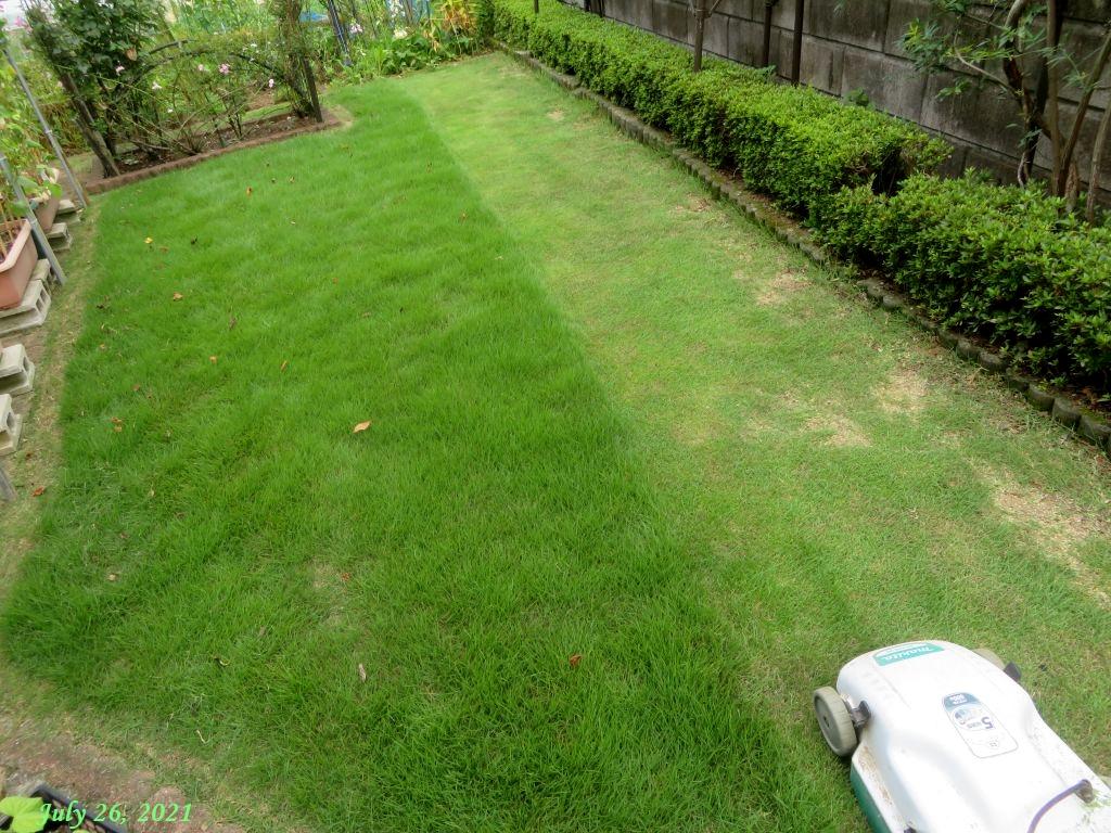 画像7(芝刈り)