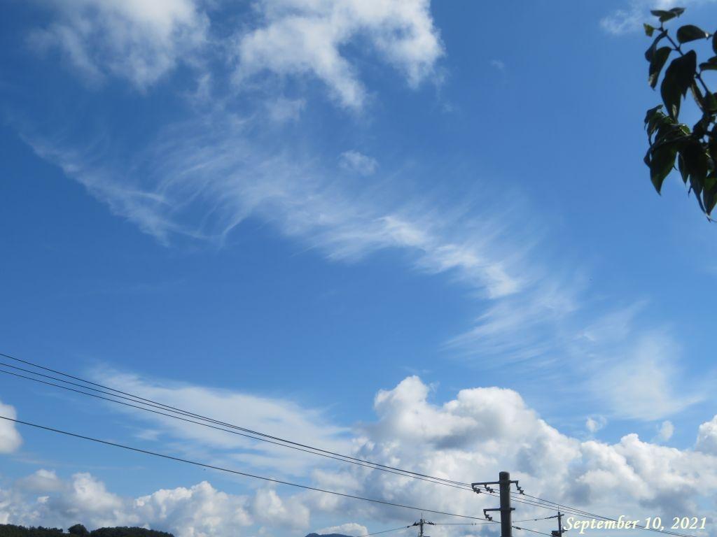 画像2(午前9時の空)