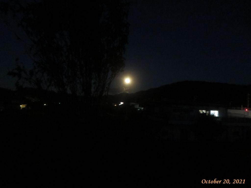 画像4(満月)