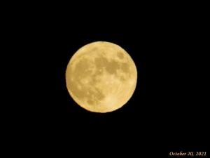 画像5(満月)